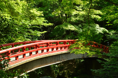 On the sunny day of spring, the red bridge in the forest