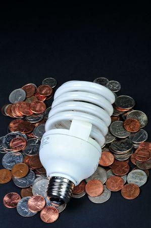florescent light: Florescent Light Bulb
