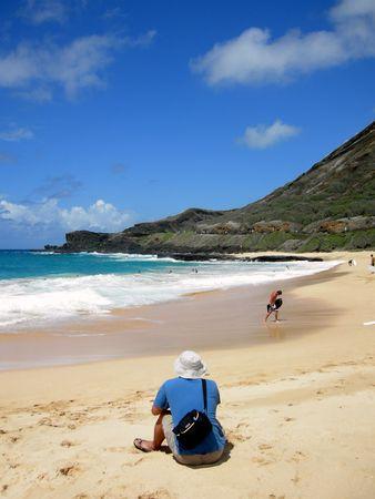 ハワイのビーチの楽園