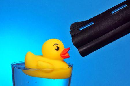 dead duck: Duck Hunting