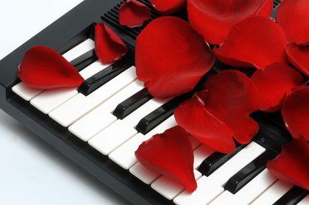 Red Rose Petals Reklamní fotografie