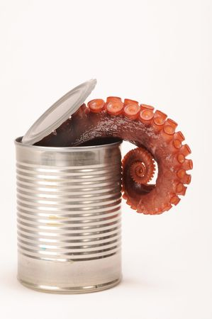 Octopus in a Can Stock Photo