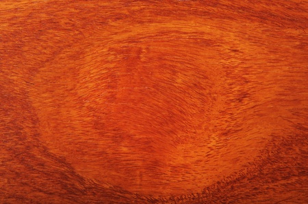 Teak Woodgrain Pattern background. Stock Photo - 8647110