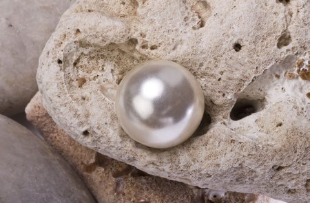 Large White Pearl Stock Photo