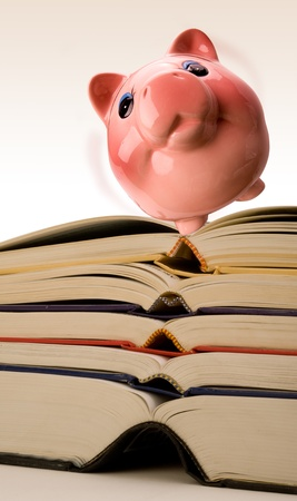 Pink Piggy Bank on Top of investment Books. Stock Photo - 11718409