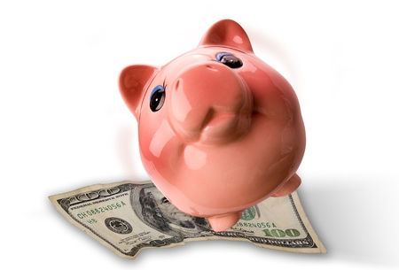 Piggy Bank and Cash. Stock Photo - 11718397