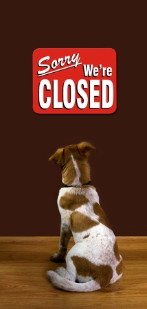 warning back: Sorry We Are Closed Reads the Dog