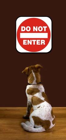 Ne pas entrer Banque d'images - 12880257