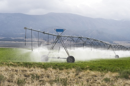 Irrigating Farmland  Stock Photo