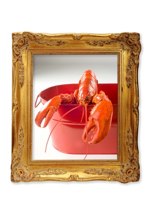Lobster  in a picture frame  Stock Photo - 13564246