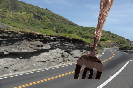 Fork in the Road Stock Photo - 14205624