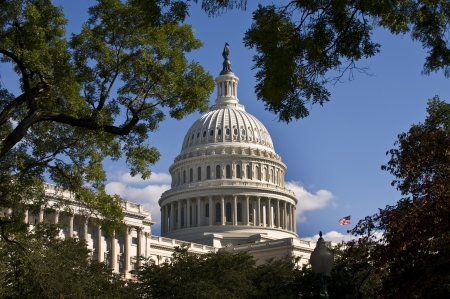 U S Capital Building in Washington D C  Stock Photo - 15337959