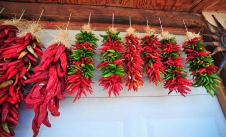 red jalapeno: Red Chili Peppers  Stock Photo