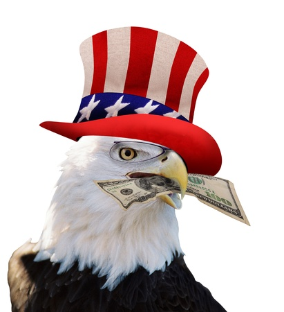 uncle sam hat: American  Bald Eagle With Cash