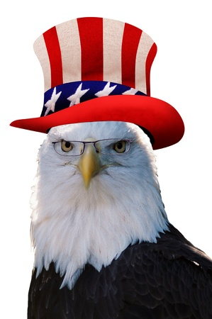 sam: Uncle Sam Eagle