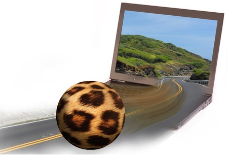 Leopard Skin Ball Rolling Into Computer  photo