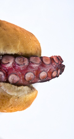 Grilled Octopus Sandwich  photo