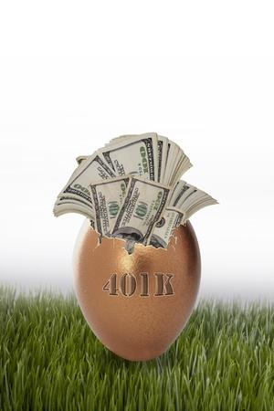 401K Golden Egg
