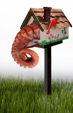 Octopus in a mailbox  photo