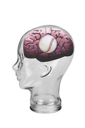 Baseball Brain  Stock Photo - 19668761
