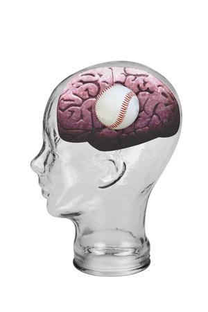 Baseball Brain Stock Photo - 19668761