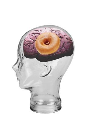 Donut Brain Stock Photo - 19668708