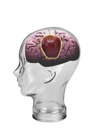 Red Apple Brain  Stock Photo - 19668723