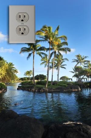 receptacle: Hawaii Room