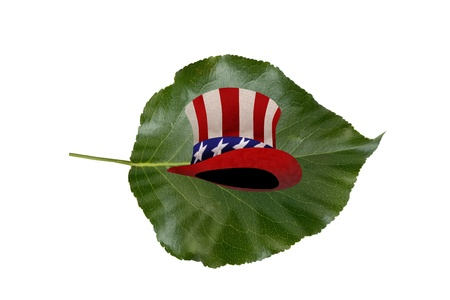 sam: Uncle Sam Hat on a leaf