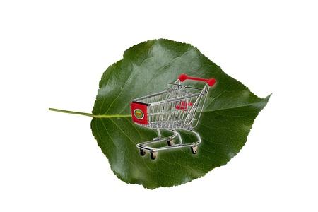 Green Shopping  Stock Photo - 19884353
