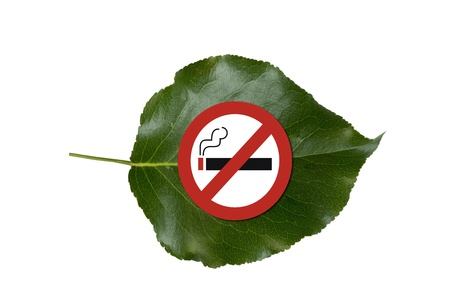 No Smoking be Green  photo