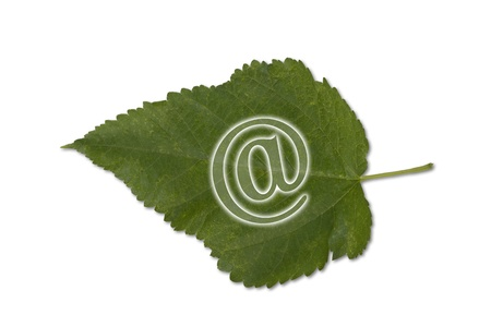 E-Commerce is green business  Stock Photo - 19807783