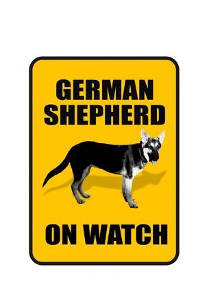intimidating: Dog on Watch  Stock Photo