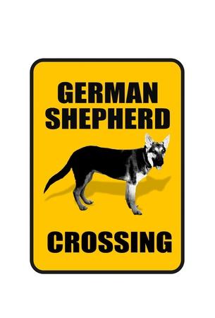 German Shepherd Crossing Stock Photo - 20073759