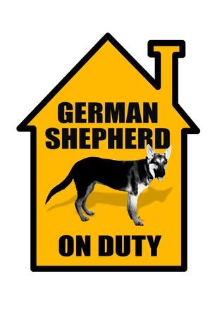 german shepard: German Shepard on Duty