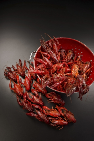 Cooked crayfish ready to eat
