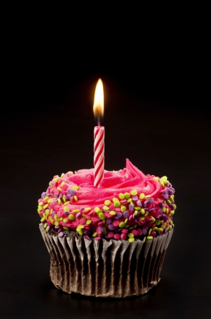 birthday cake with candles: Cupcake with bright candle