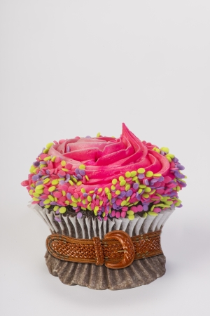Slimming Cupcake Stock Photo - 20955273
