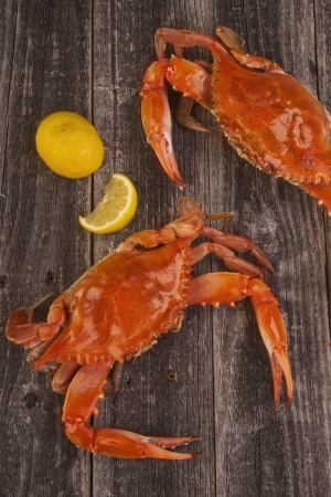 crab meat: Cooked crabs on a rustic background  Stock Photo