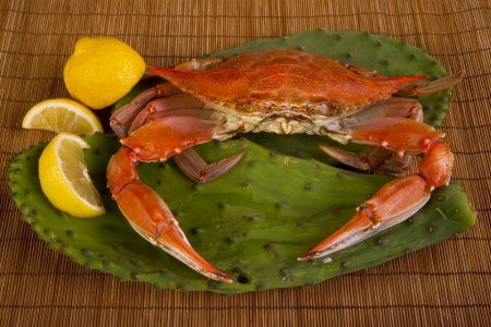 Cooked crab on cactus leaf
