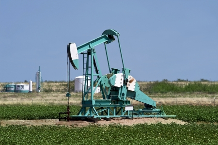 West Texas oil well pumper in cotten field  Stock Photo