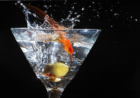 Splashing goldfish in the martini glass. Stock Photo - 26173826