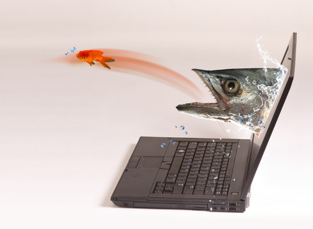 Monster fish comming out of computer screen after goldfish. photo