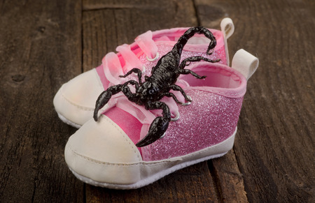 Check your shoes for a scorpion.