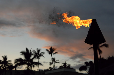 Hawaii torch with room for your type. Editorial