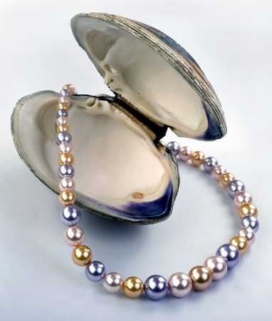 pearl necklace: Large multi colored chocolate and black Tahitian pearls. Stock Photo