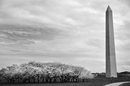 sightsee: Washington Monument in Washington DC.