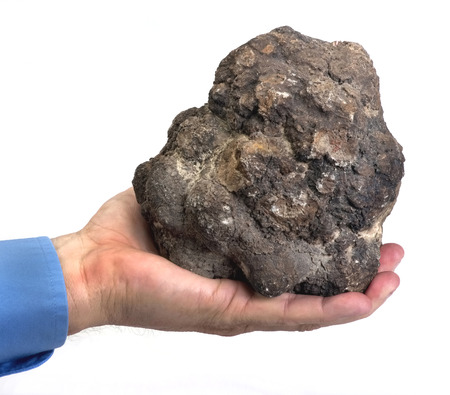 Real dinosaur poop in hand called coprolite, 140 million years old.