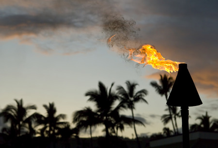 honolulu: Tiki torch burning in hawaii with room for your type.