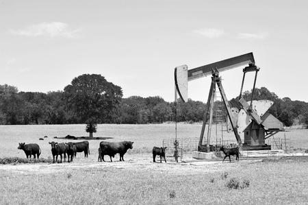 texas tea: Texas oil well pumper in black and white  with room for your type. Stock Photo